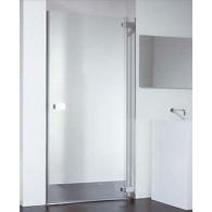 Душевая дверь Provex E-lite 2007-EI-05-GL R 120 см