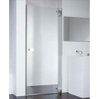 Душевая дверь Provex E-lite 0004-ET-05-GL L 90 см